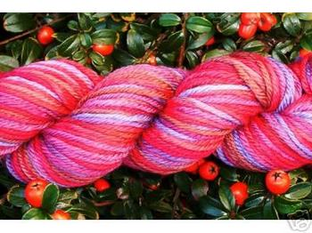 Ebay_artyarns_supermerino_color_111_clos